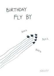 SILLY INSECTS SI0123 FLY BY.jpg