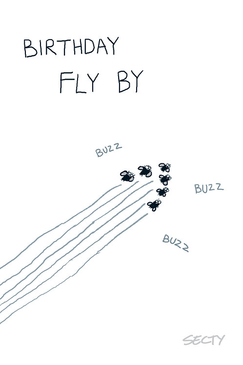 Silly Insects - Birthday Fly By
