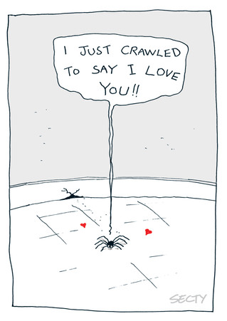 SILLY INSECTS SI0125 CRAWLED TO SAY.jpg