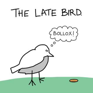2. LATE BIRD.jpg