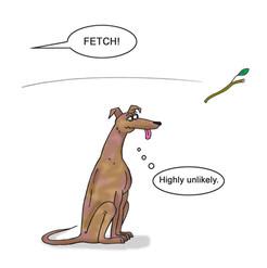Greyhound Fetch.jpg