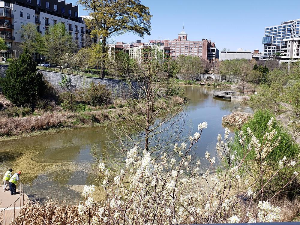 Historic Fourth Ward Park Atlanta BeltLine