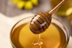 honey-4770245__340.webp