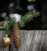 christmas-3794925__340.jpg
