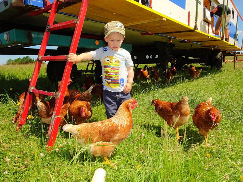 Beim täglichen Eier-Abnehmen: von Klein auf werden unsere Kinder schon regelmäßig miteinbezogen in die alltäglichen Arbeiten am Bauernhof.