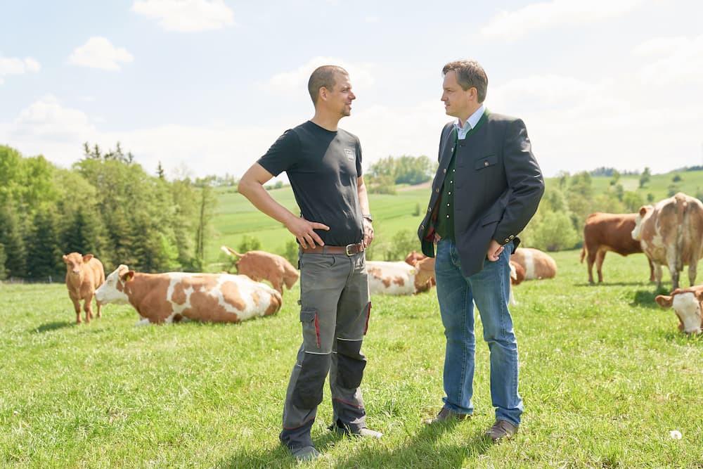 Betriebsführer Franz mit LKNÖ-Präsident Johannes Schmuckenschlager auf der Rinderweide.