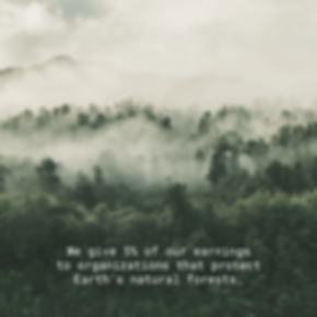 EvergreenChai-Insta-Oct-10.png
