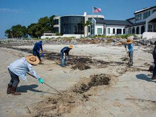 Shoreline clean-up teams recover oil