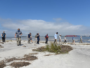 Photo Release: St. Simons Sound Incident Response Environmental Unit conducts SCAT training