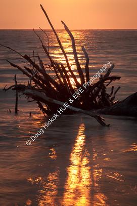 1907-02 Boneyard Sunrise 20