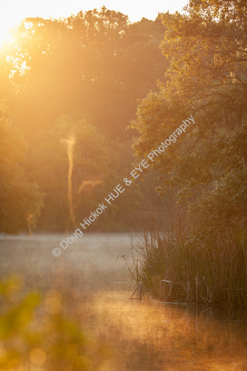 2004-04 WA Park Lake Sprite 01
