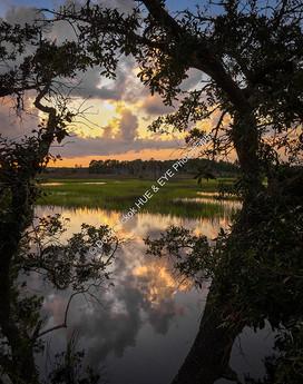 1808 West Ashley Greenway Sunset 01