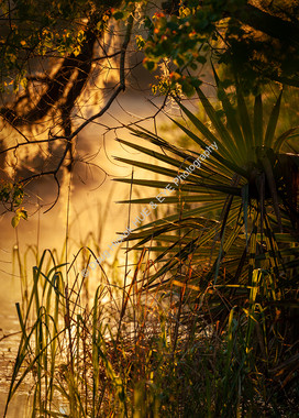 2004-06 WA Park Sunrise 06