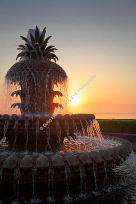 1203 Waterfront Park Sunrise 50