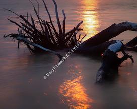 1907-02 Boneyard Sunrise 11