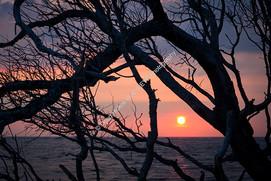 1907-02 Boneyard Sunrise 4