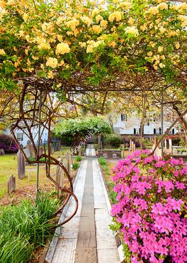 1803 Churchyard Spring 01-2