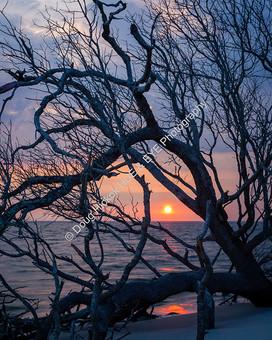 1907-02 Boneyard Sunrise 03
