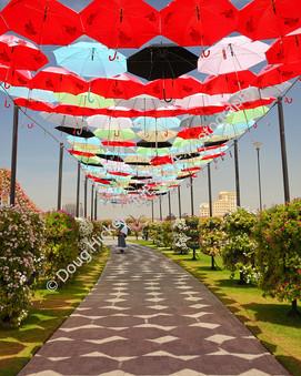 2013 UAE 104.jpg