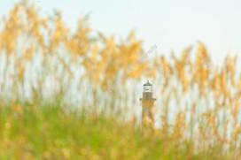 2007 Folly Beach Lighthouse 16