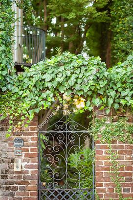 1807 Ivy Gate