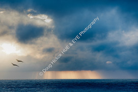 2004 Folly Beach Storm 21