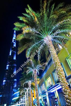 2013 UAE 21.jpg