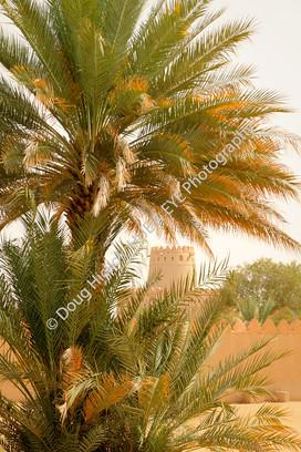 2013 UAE 46.jpg