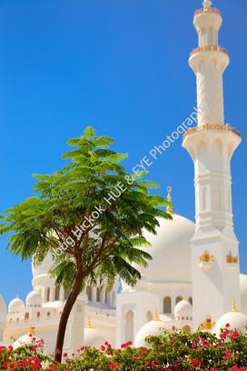 2013 UAE 38.jpg