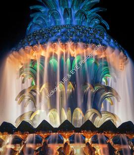 1010 Night Fountain 10-2