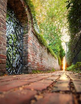 10 Alley Sunrise 5-3