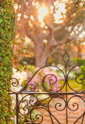 1903 Spring Garden Gate 1