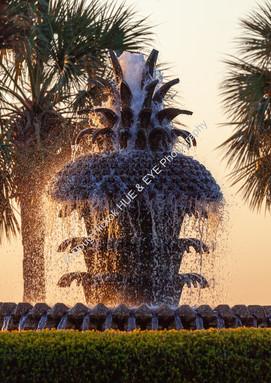 2002 Pineapple Fountain 05