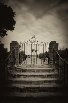 1302 Middleton Steps and Gate