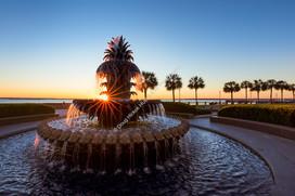 2002 Pineapple Fountain 01-2