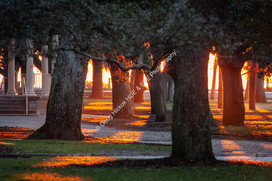 2002 White Pt Gardens Sunrise 3