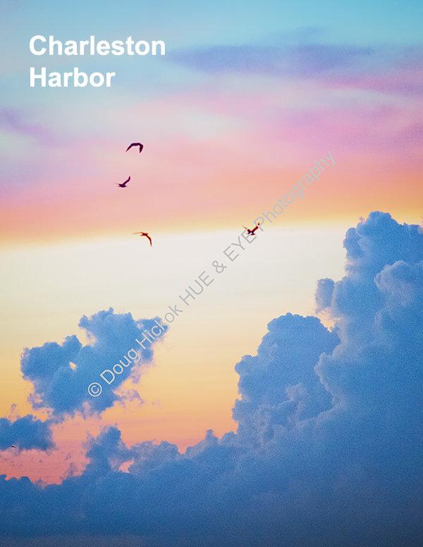 HarborTitle.jpg