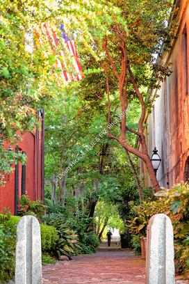 1905 Philadelphia Alley