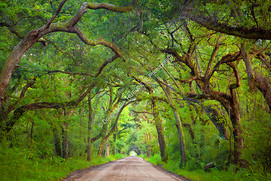 1908 Botany Bay Road 2