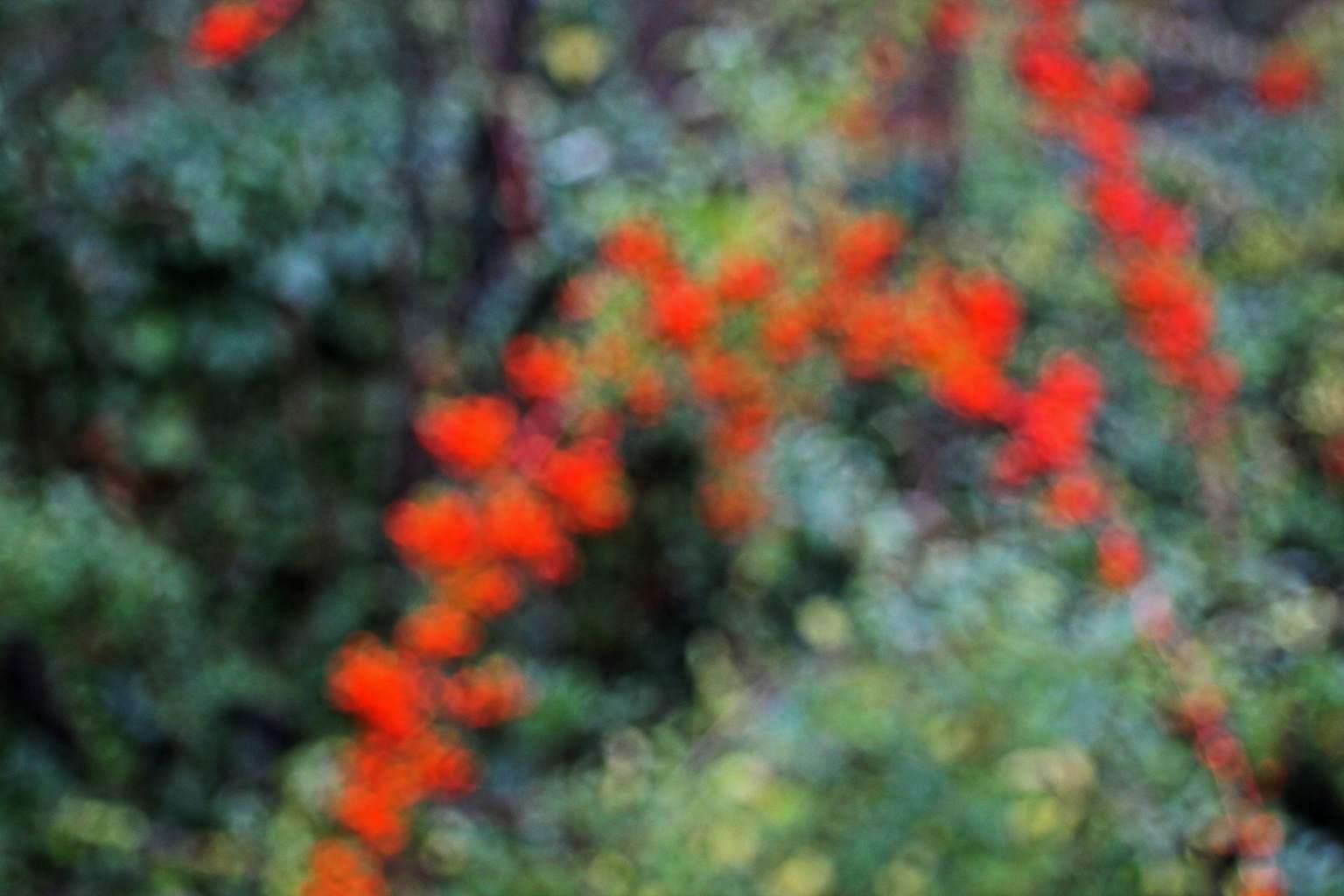 Bernard SIMON - Impressionisme