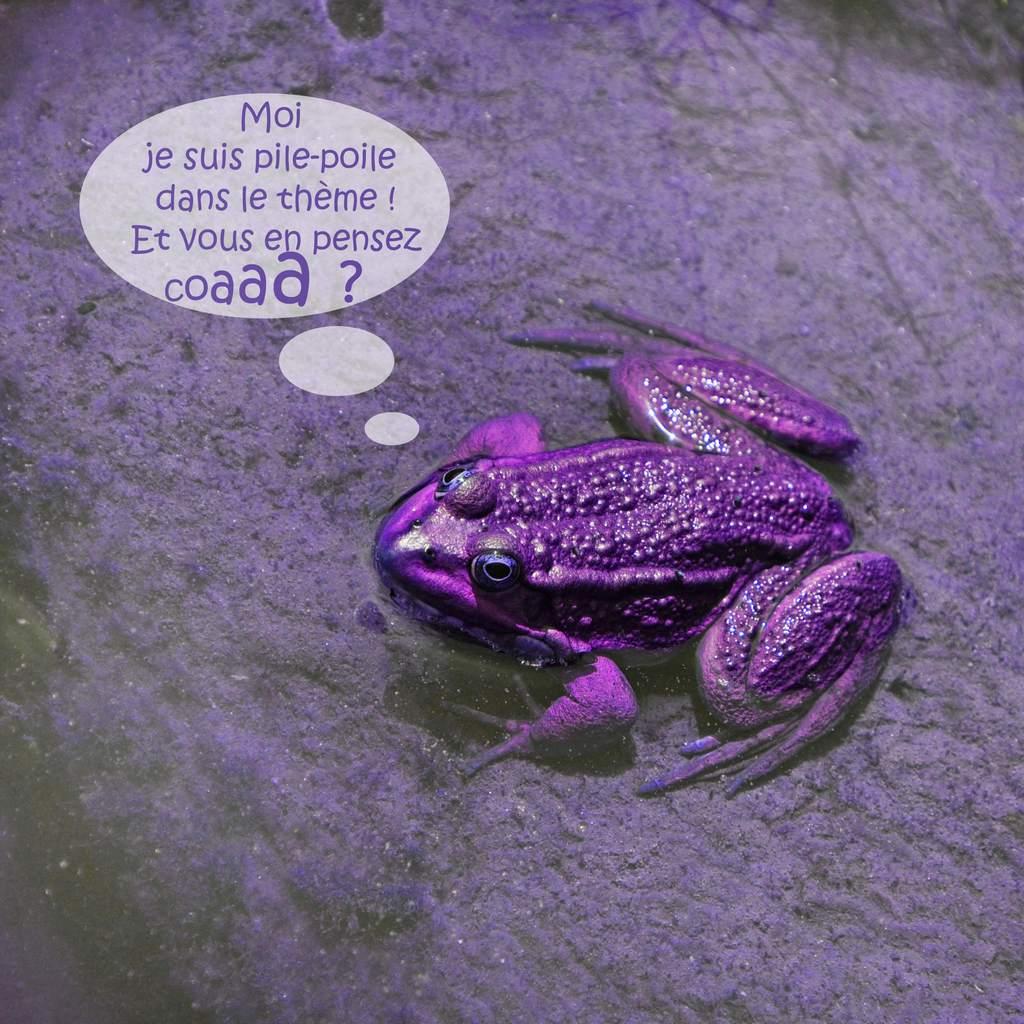 JLL_violet-oct18