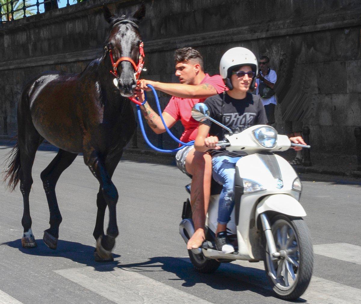 séjour_Sicile-1-2017_223