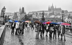 JLL_rue sous la pluie_2
