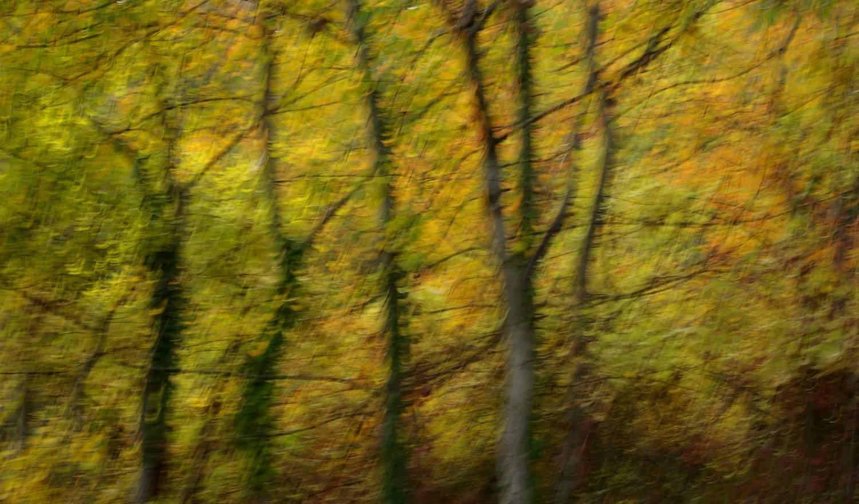 Gilles MANAS - Impressionisme