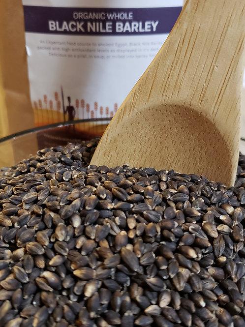 7.5lb Black Nile Barley (organic)