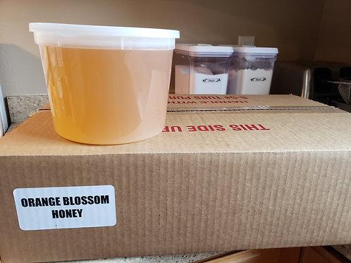 Orange Blossom Honey (Raw) - 5lb tub