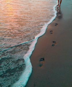 beech walking sea