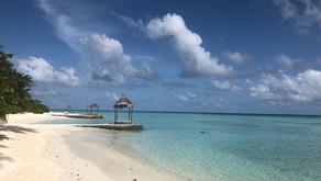 Maldive da Sogno: l'esperienza dei nostri clienti all' Alimathà Resort per il loro #viaggiodinozze