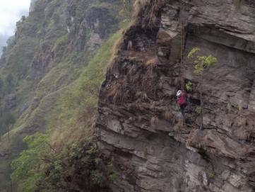 Api Nepalesi - Le giganti dell'Himalaya e i Kulung