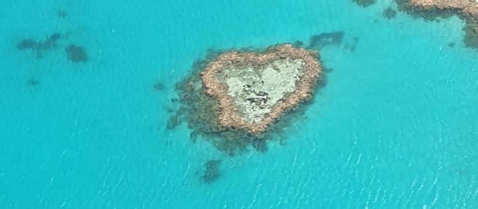 barriera corallina australia viaggio di